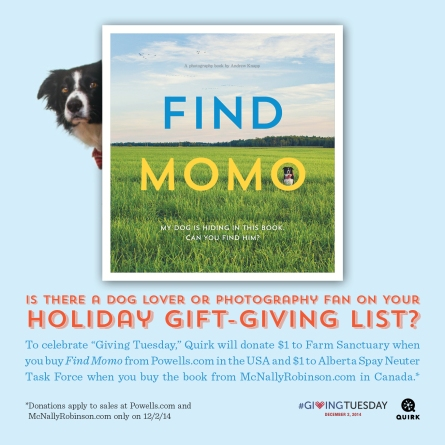 FindMomoGivingTuesday_AR