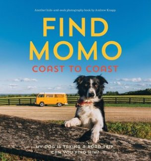 findmomocoast